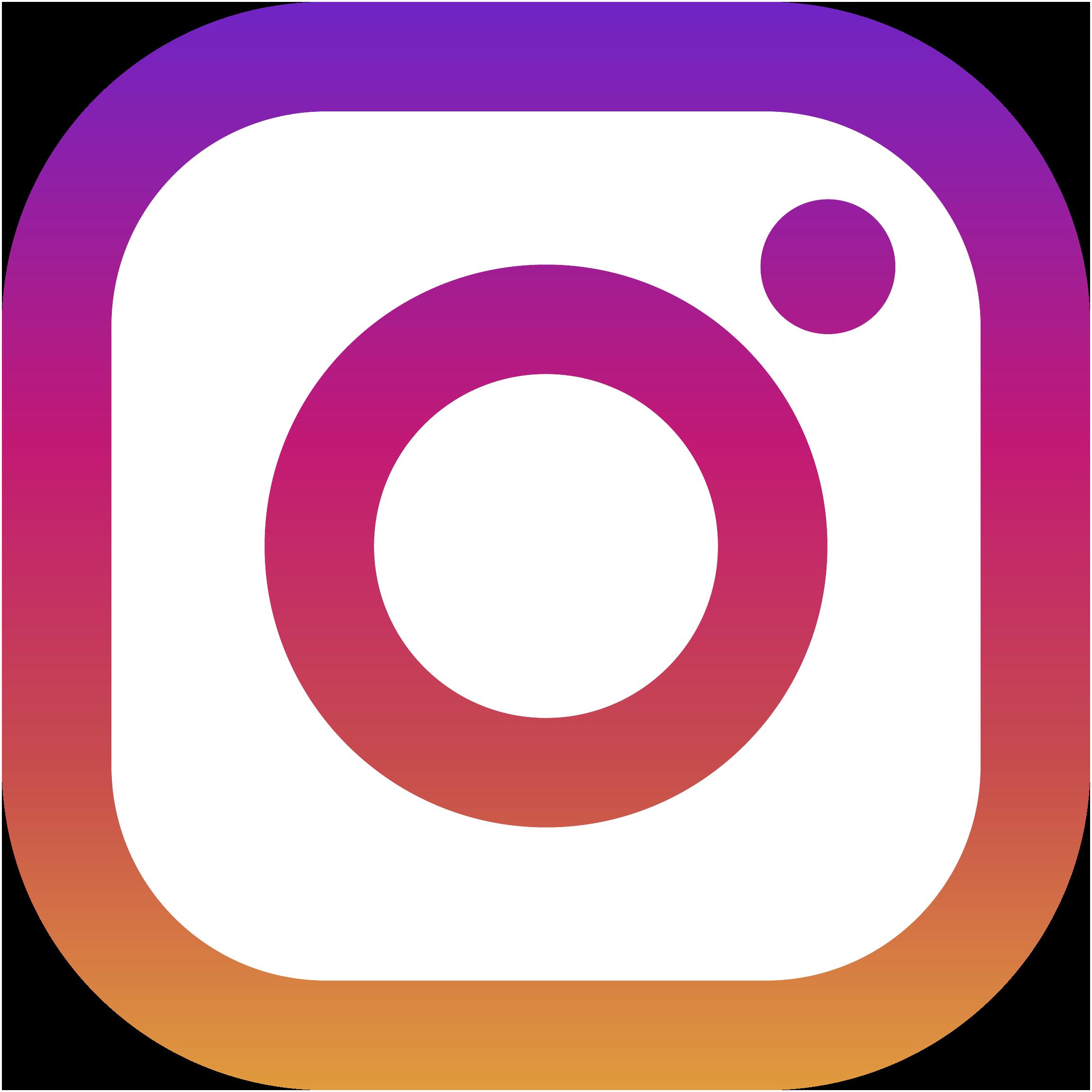 Logo Instagram David Mann